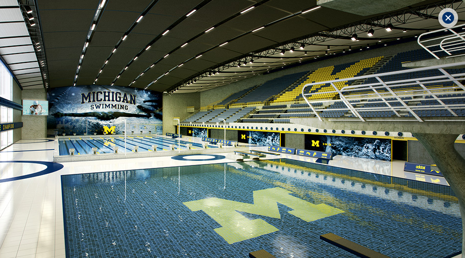 Ann arbor named top swimming city in america by usa for Pool show michigan