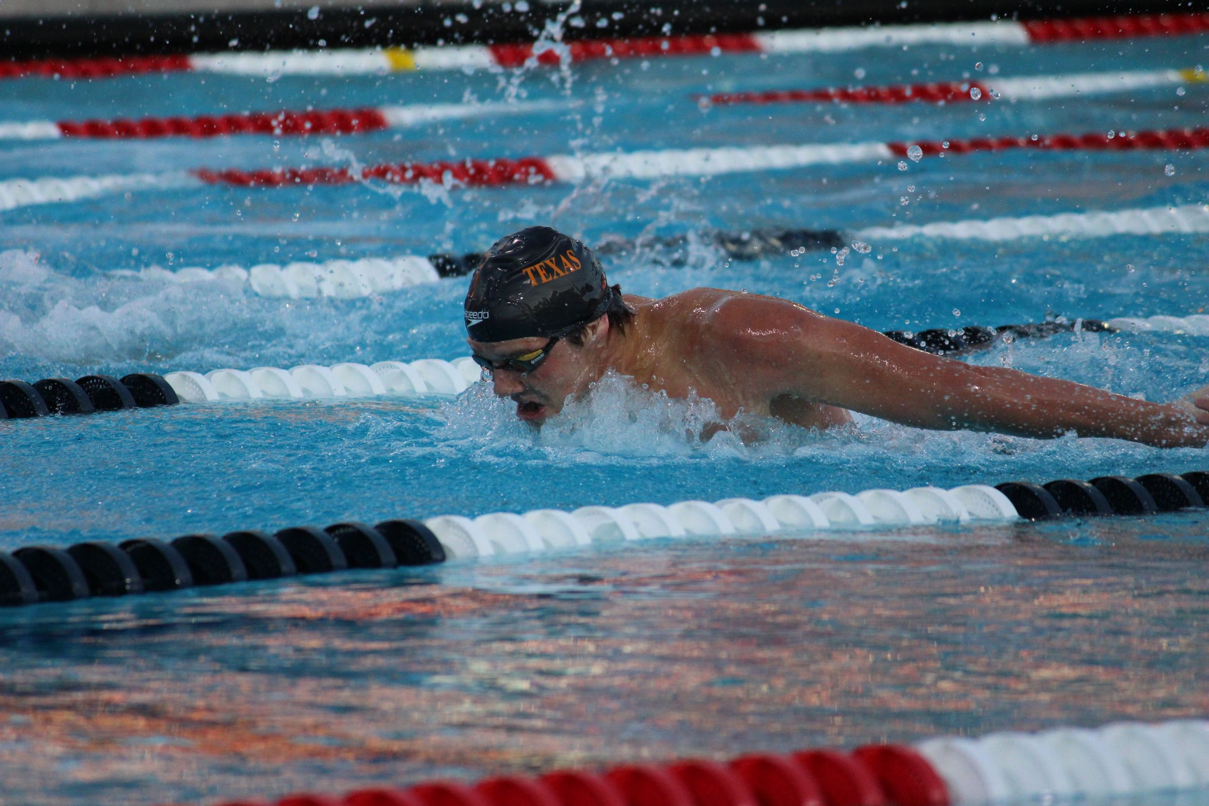 texas swimming and diving wraps up dual meet season with rout of tcu tcu guide book 2017 tcu guide book 2017/18