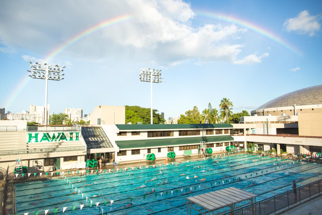 Swimming Rainbow Pool : Tips for studying swimmers to survive finals