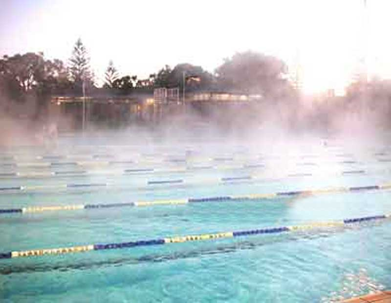 5 Hard Choices To Swim Successfully