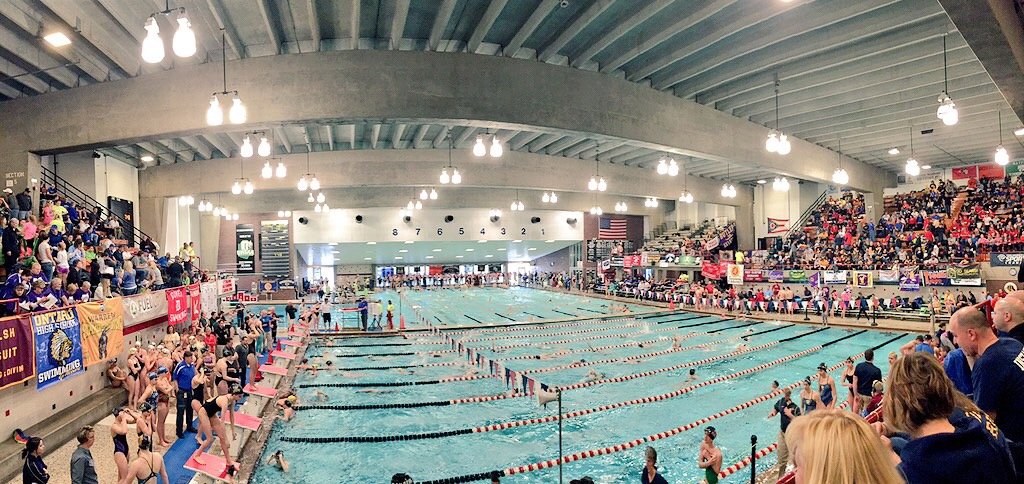 Fast Swimming All Around At Ohio State Division 1 Champs