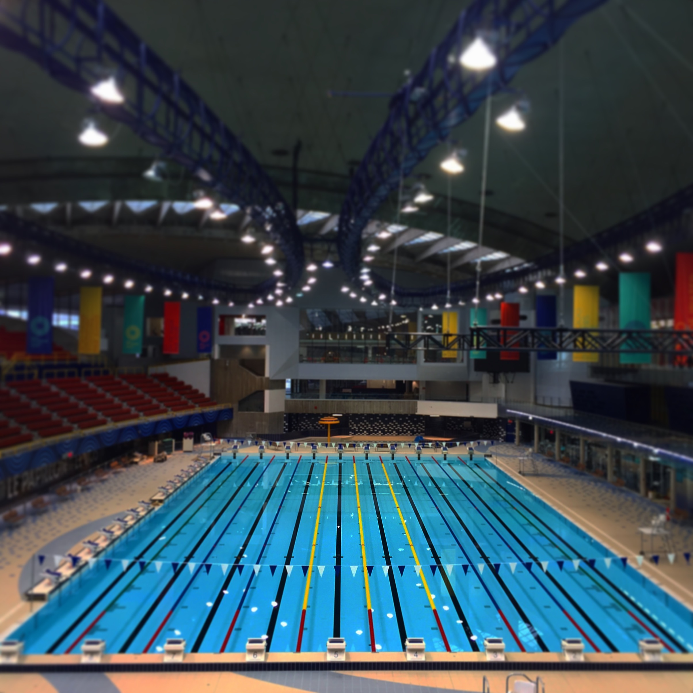 home olympic swimming pool 2015 intensive training program looks to take canadian swimming to new - Olympic Swimming Pool 2015