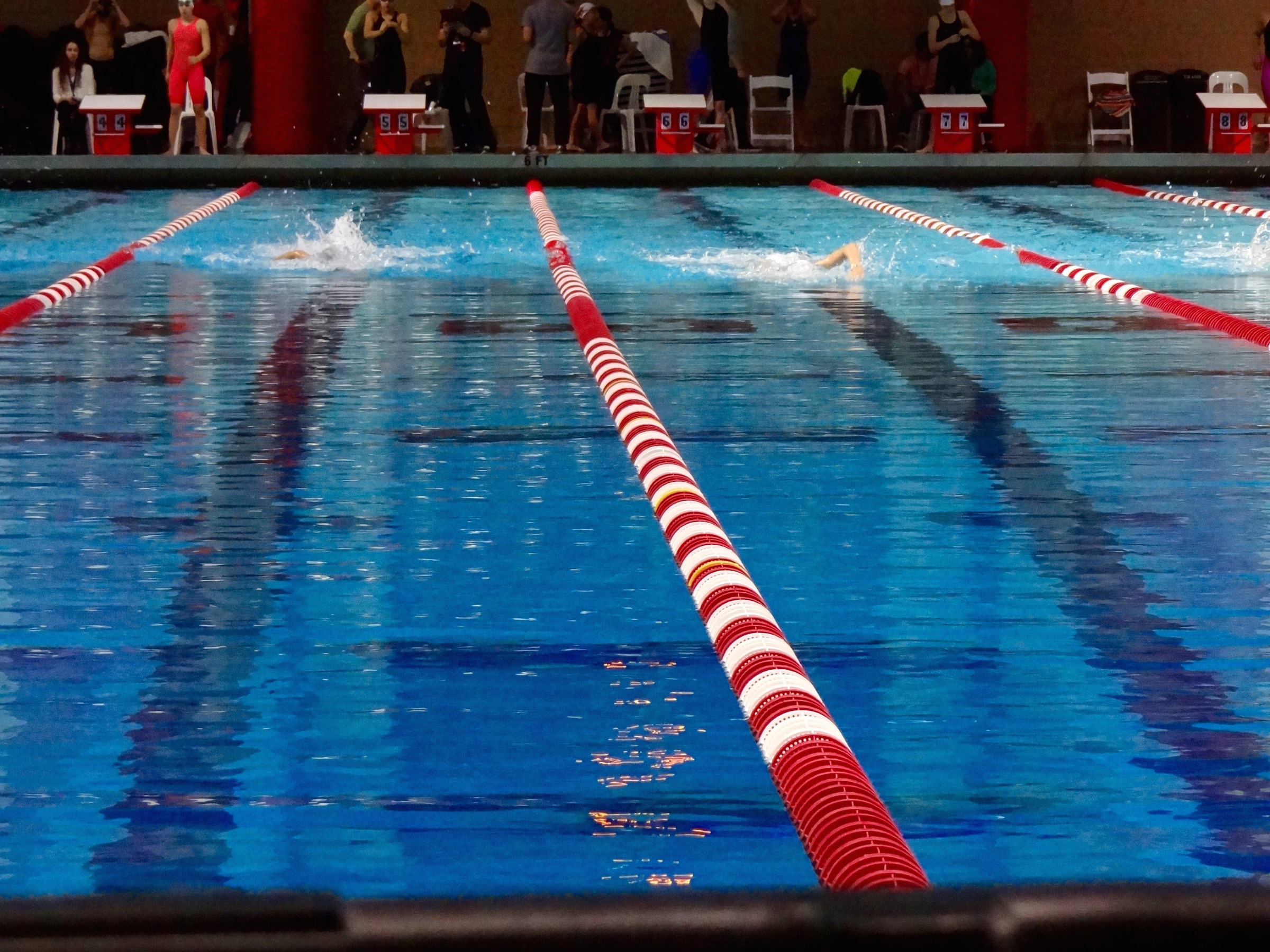 Boise State Nevada Duel For Mountain West Conference Victory Swimming World News