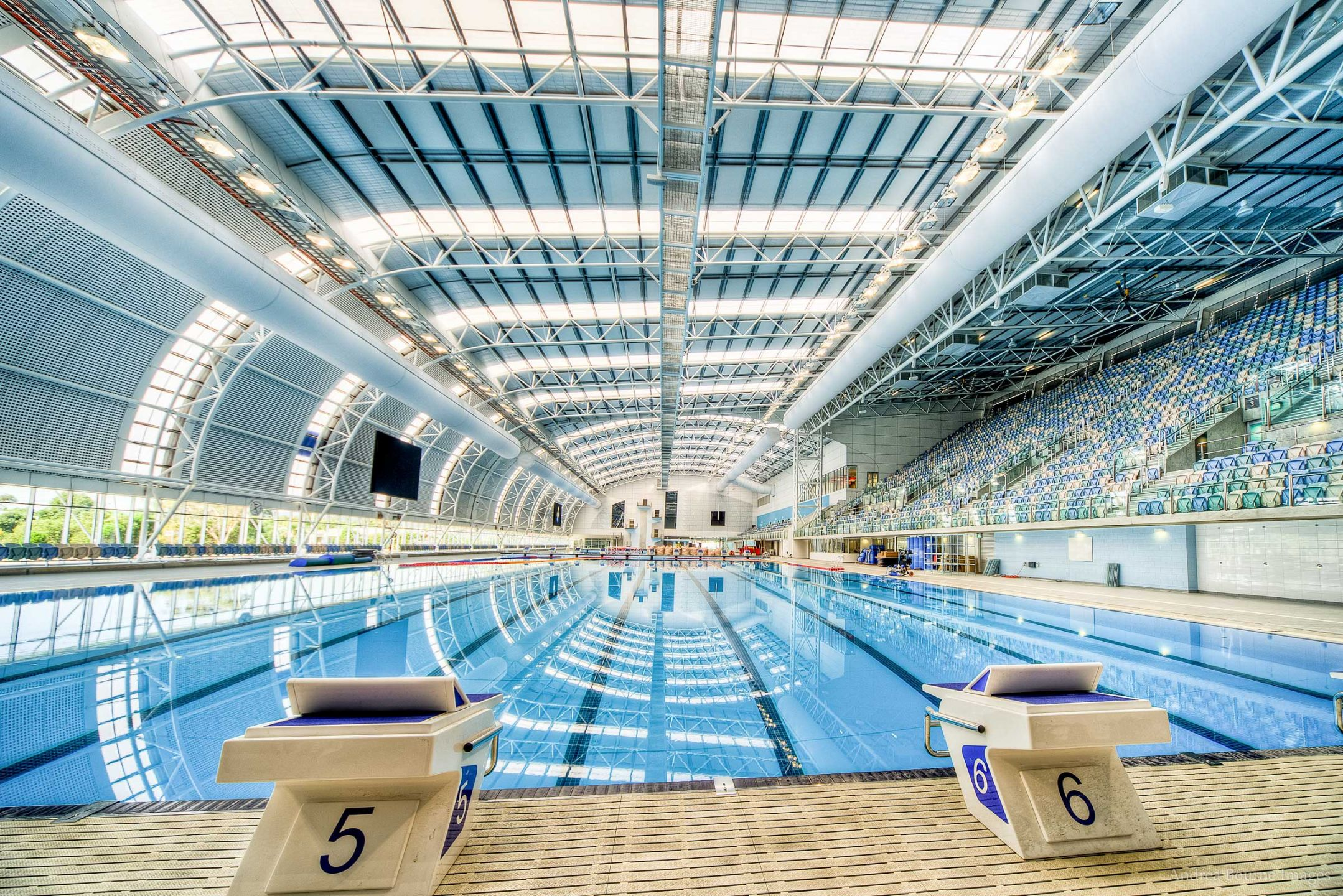 Australian olympic trial race previews who to watch for Swimming pool design jobs