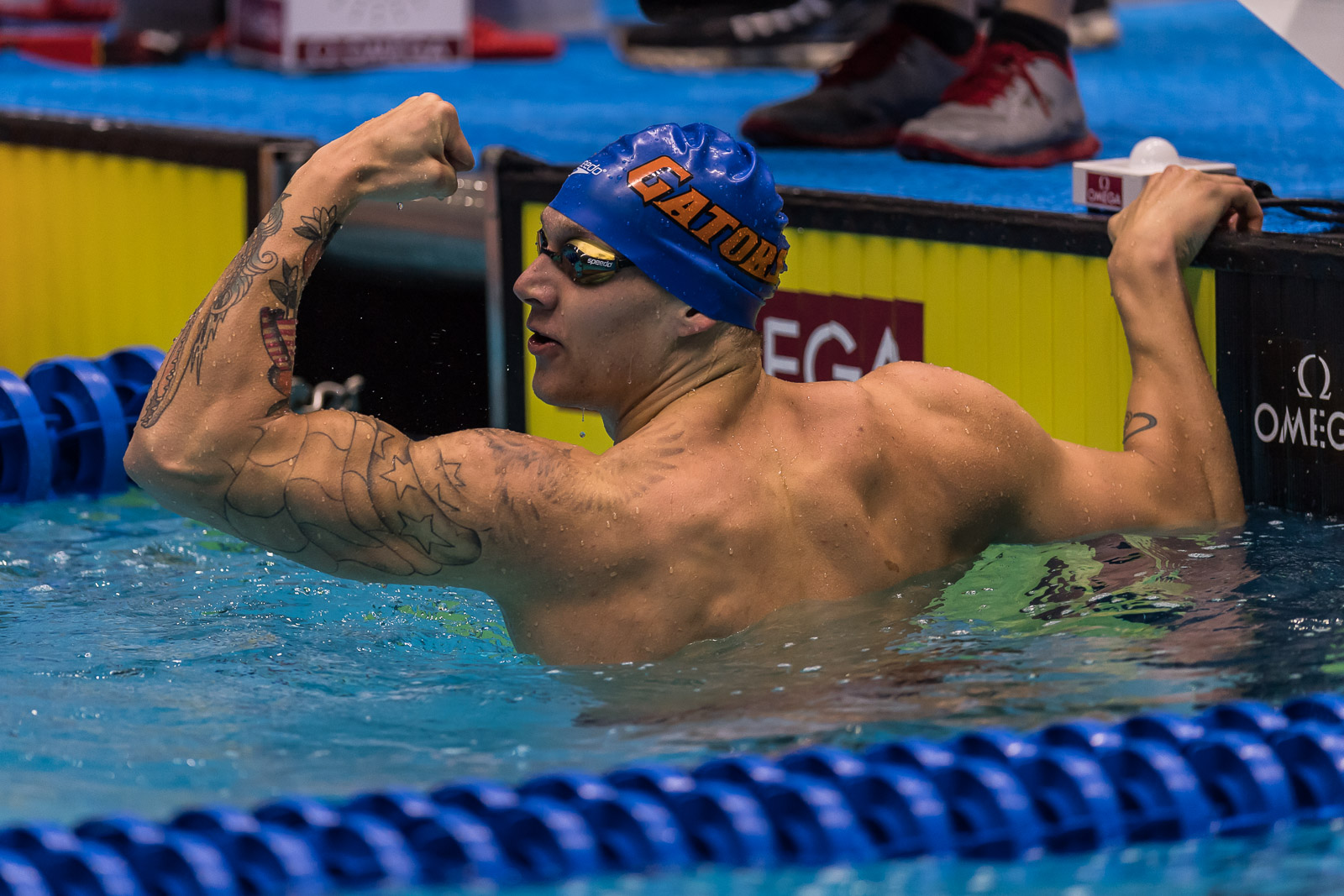 Olympic Swimming Races 2017